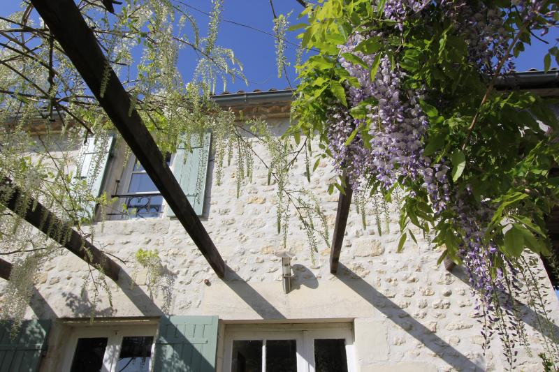 View of back of Wisteria