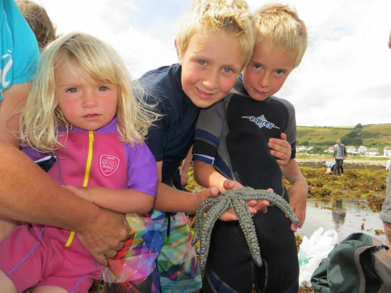 Find some fascinating sea critters on a rock pool safari!