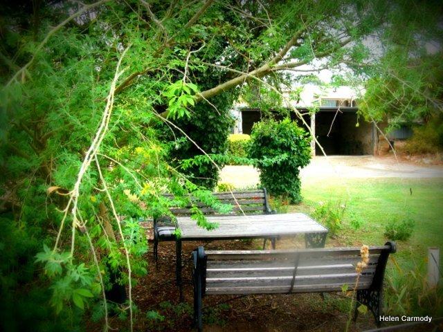 En trevlig skuggig plats för en kopp kaffe eller en pre middag drinkie