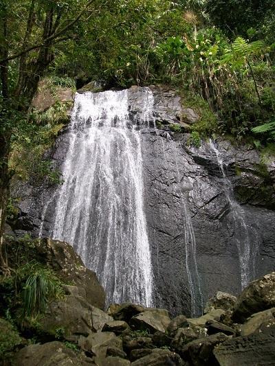La Coca fall at El Yunque.
