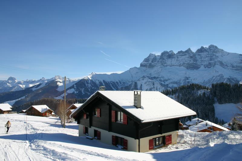 Free-standing family chalet