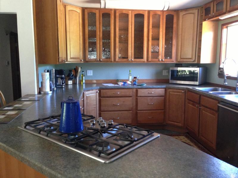 Kitchen - Propane Stove