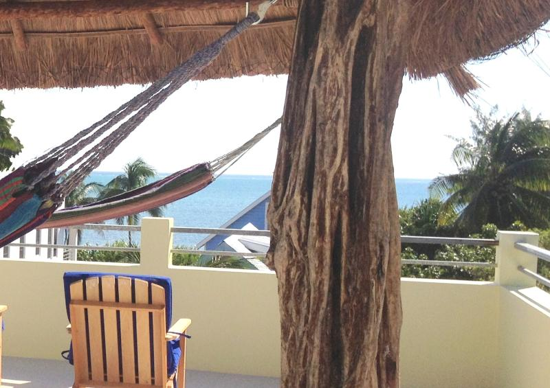 Private Roof Top area with Palapa and Hammocks