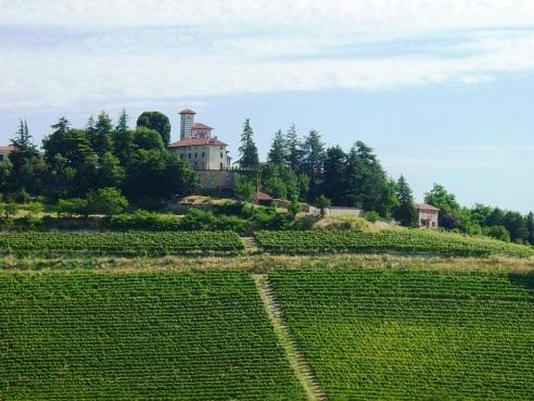 Grillano Castle - Organic wijnmakerij