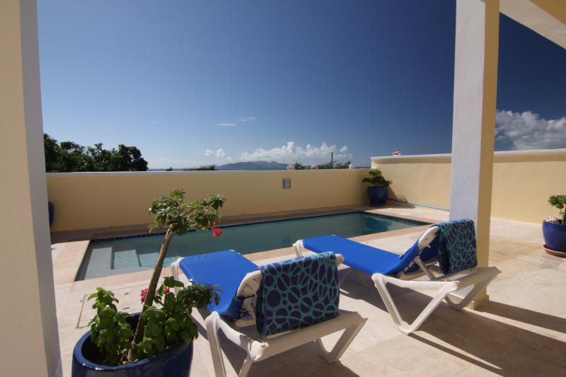 Profitez de l'océan et l'île des vues de la piscine Almond Tree Villa terrasse privée.