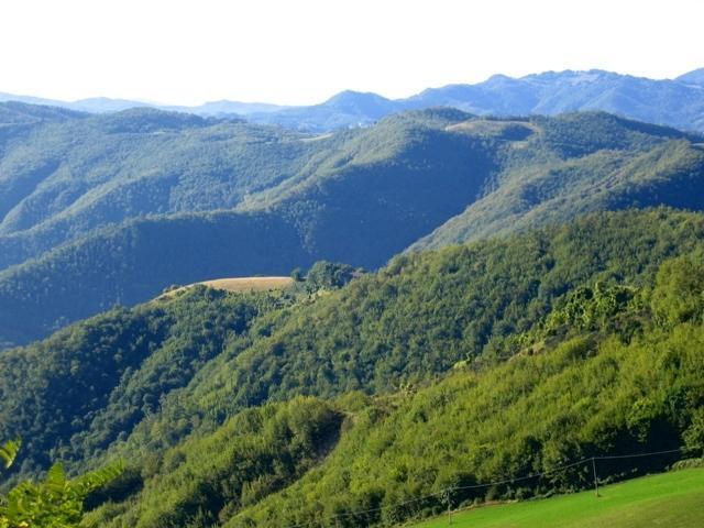 Cabraldi Magnolia, vacation rental in Province of Forli-Cesena