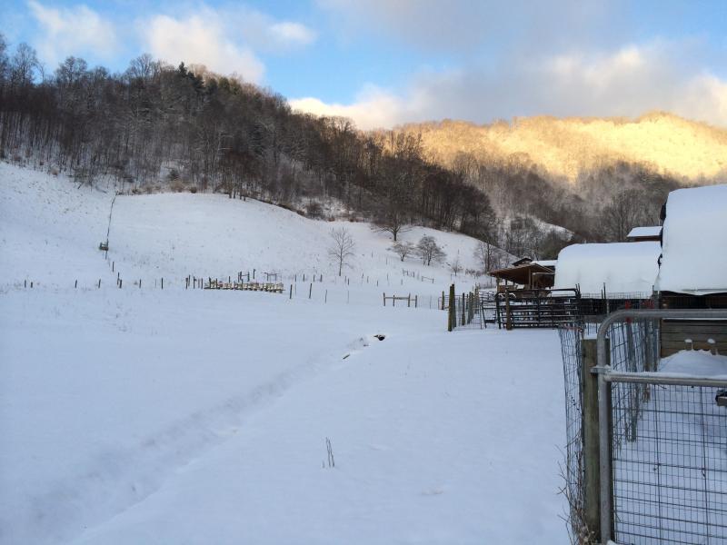 Foto nieve de la granja