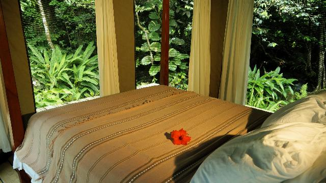 Ambazaman bed and view