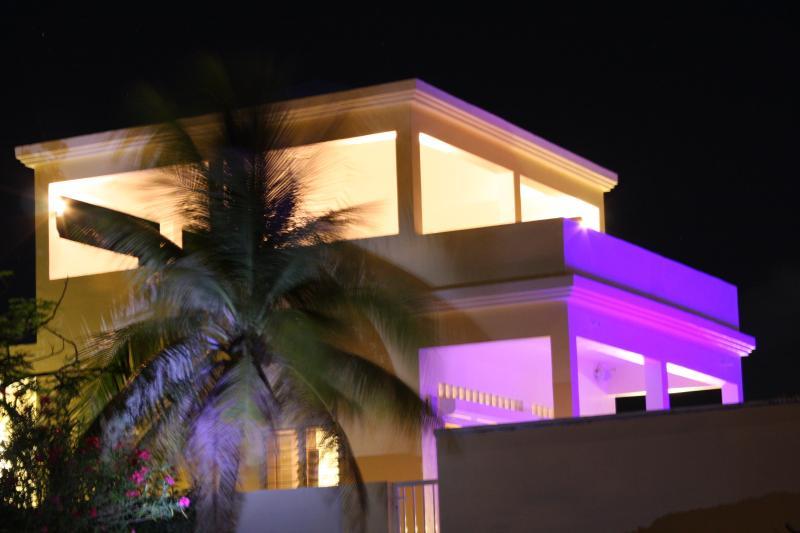 Palmiers de nuit dans la brise à l'amandier Villa.