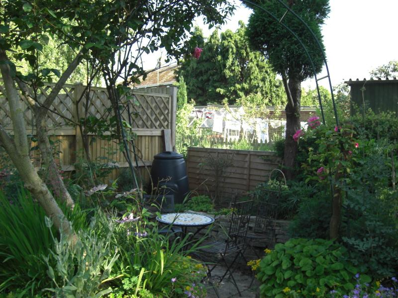 The garden with sunken patio area