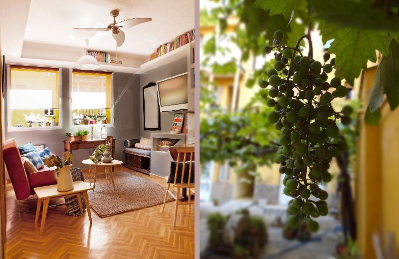 Redecorated Living Room from July 2014, Vine in Patio