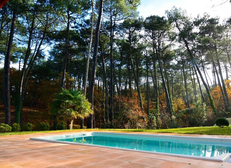 A beautiful pool to escape to after a hot day on the beach