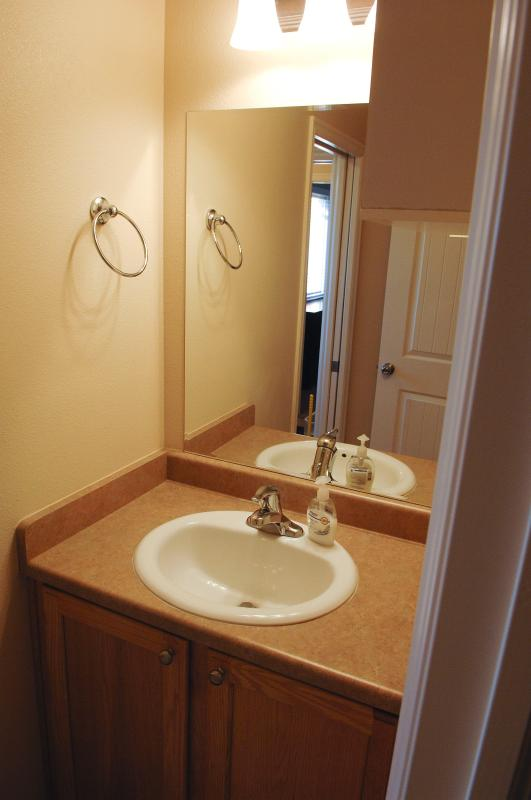 Full Guest Bathroom