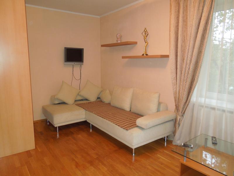 Cute studio apartment on the streets of Minsk, location de vacances à Barvikha