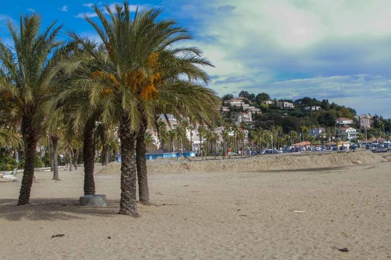 Le Lavandou- small part of  beach- with palm trees