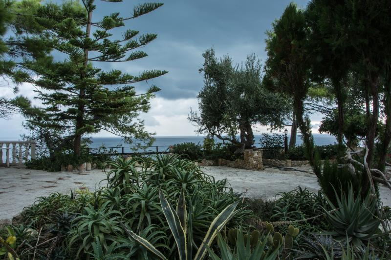 the garden in front the property with sea view