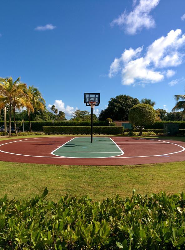 Basket-ball n'importe qui ?