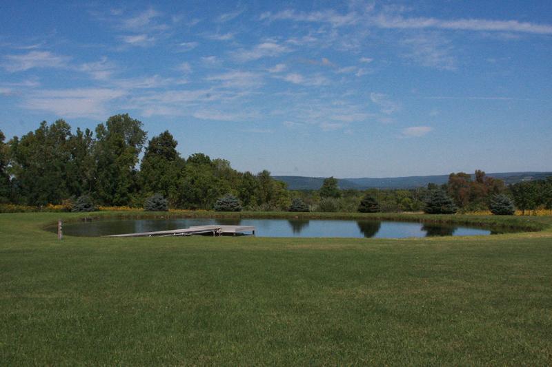 The Redmond House pond