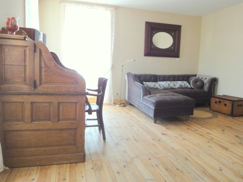 Le salon, avec bureau et bibliothèque bien achalandée.