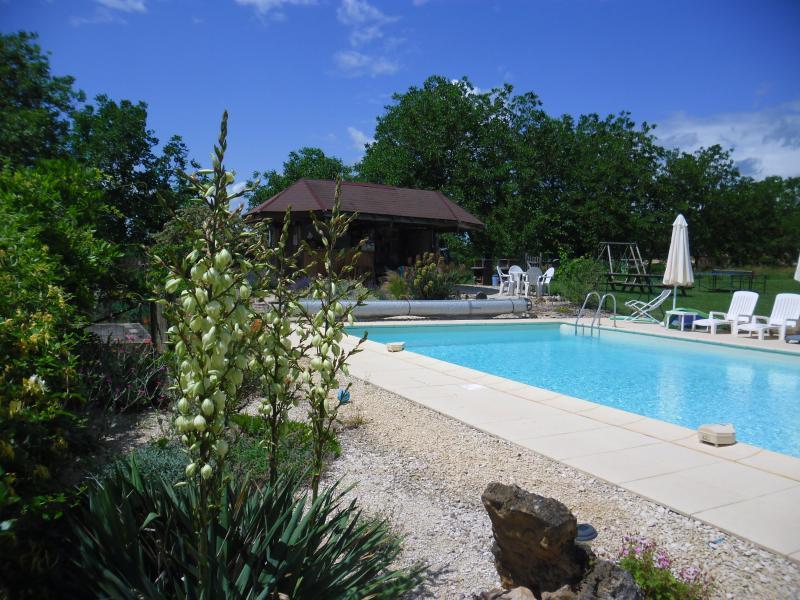 12 x 6m salt-system pool - fenced & alarmed for safety