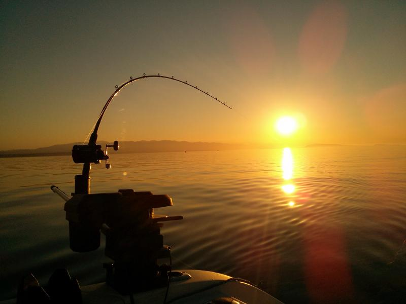There is great fishing to be had in the area. We can direct you to a good local fishing guides