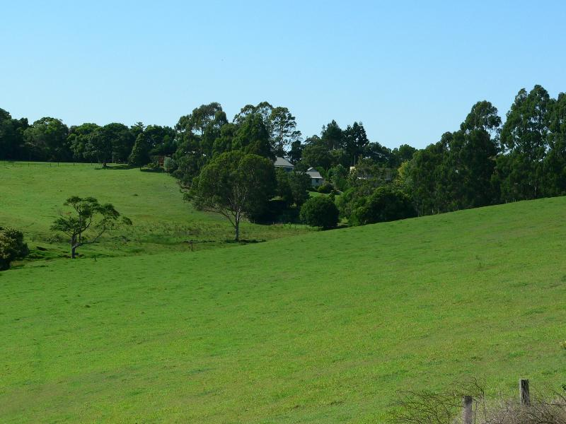 Rolling Green Hills Of Maleny