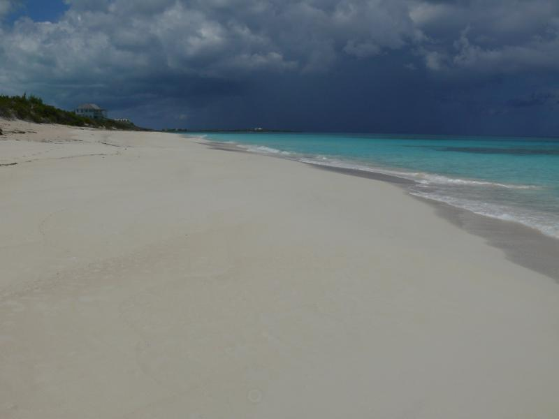 walk the endless beach at the house every morning