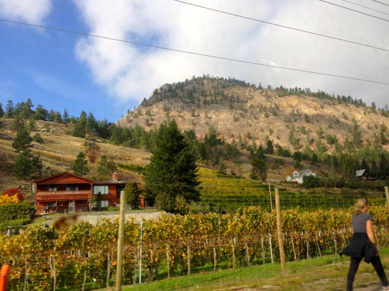 Award winning wineries are right at our door, along beautiful Bottle Neck Drive.