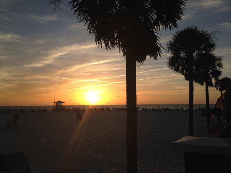 Sunsetting on Clearwater beach There are  lots of Activiities to Enjoy on The Beach