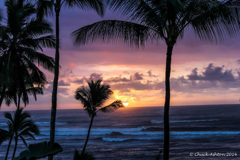 Islander on the Beach Breathtaking Oceanview 259 Studio, aluguéis de temporada em Kauai