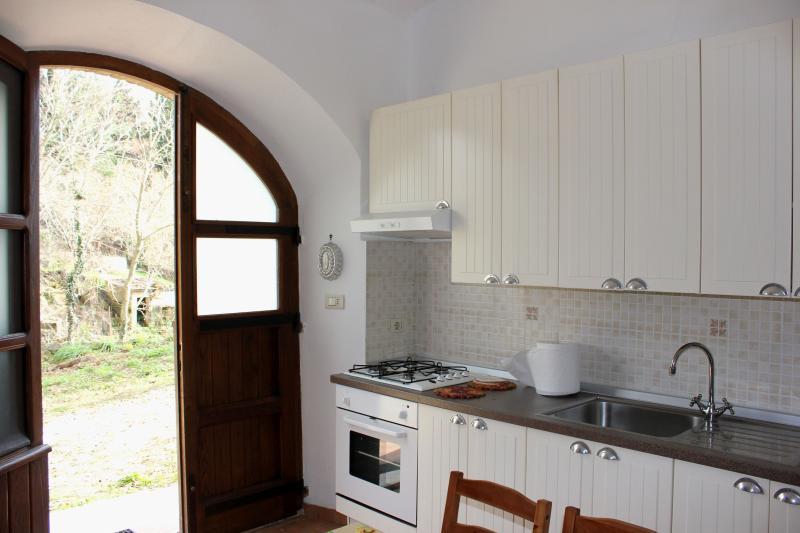Kitchen/Living room, the  entrance door