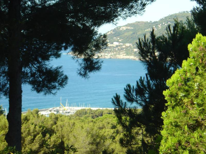Villa Teresa nel verde della collina di Pinamare, holiday rental in Laigueglia