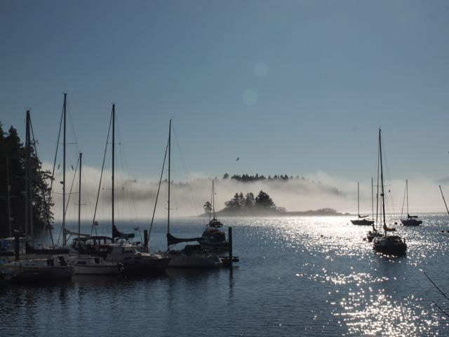 Mist by the Government Wharf