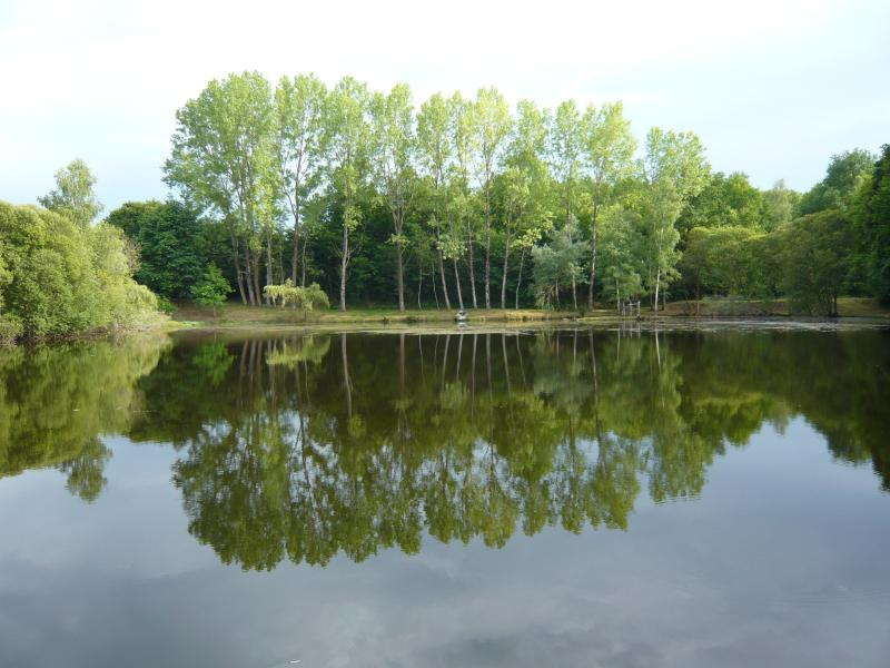 View across the Main Lake
