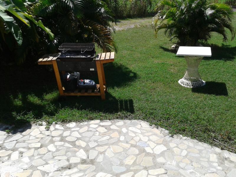 Barbecue dans le  jardin