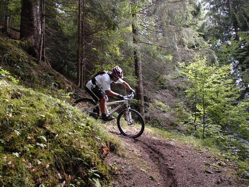 mountain-bike e downhill, Appartamenti Il Gufo Vacanze - Valsugana, Trentino Alto Adige