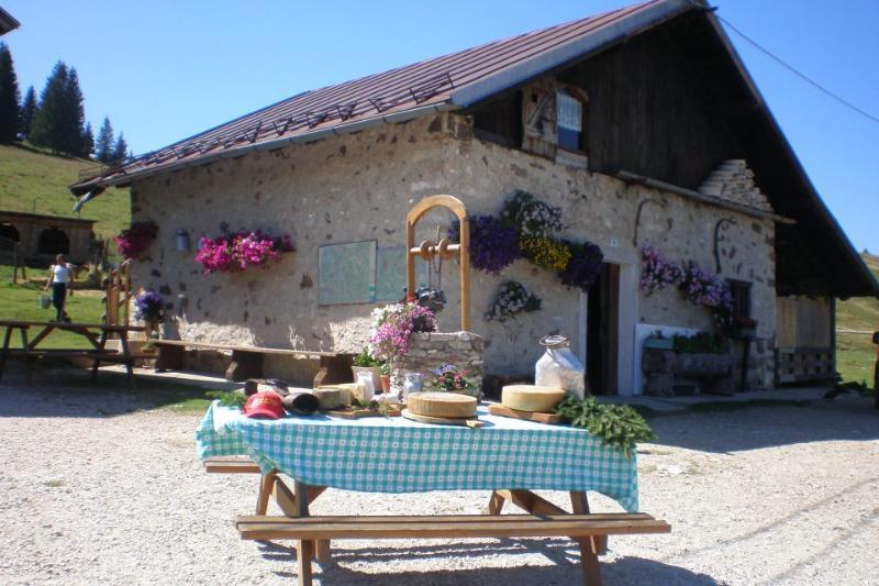 malghe e passeggiate, Appartamenti Il Gufo Vacanze - Valsugana, Trentino Alto Adige