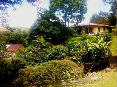Lake Arenal Bungalow, holiday rental in Tenorio Volcano National Park