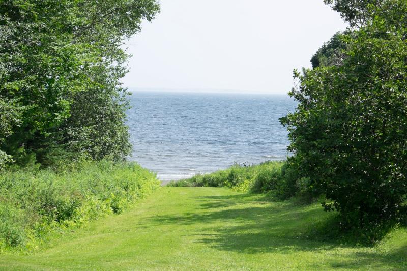 Grass path to beach