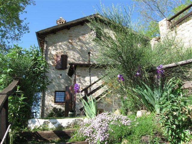 Panoramic apartment in the hill, holiday rental in Sant'Angelo In Pontano
