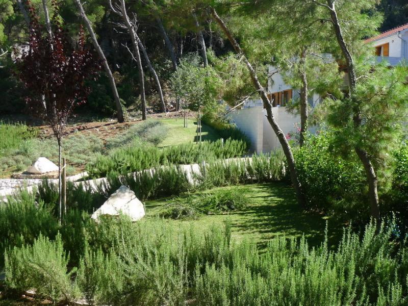 Mediterranean garden around Villa Azzurro and Bianco