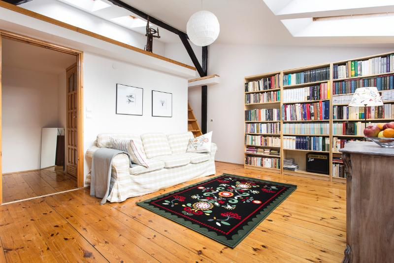 Living room with comfy big sofa and book collection.
