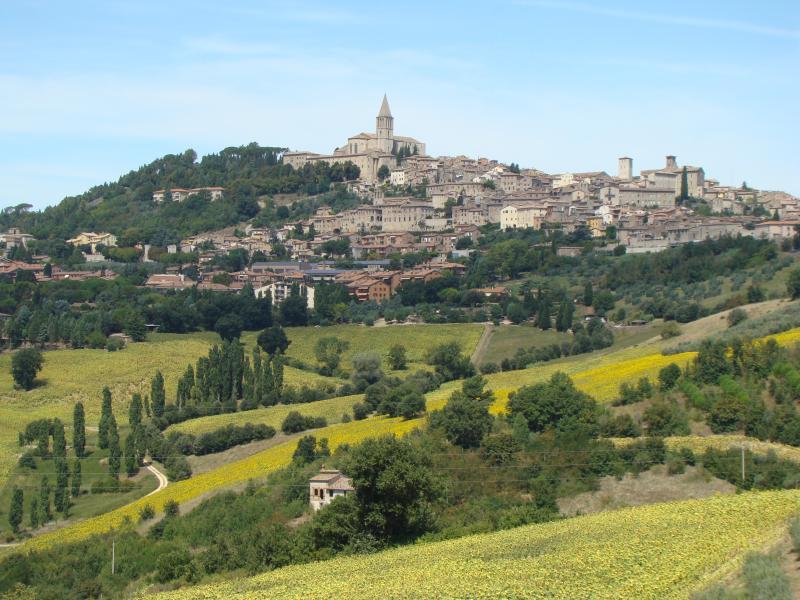 Across the fields to Todi