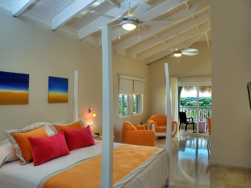 Beach Suite or Junior Suite w/ Gold VIP Bracelets, vacation rental in Puerto Plata