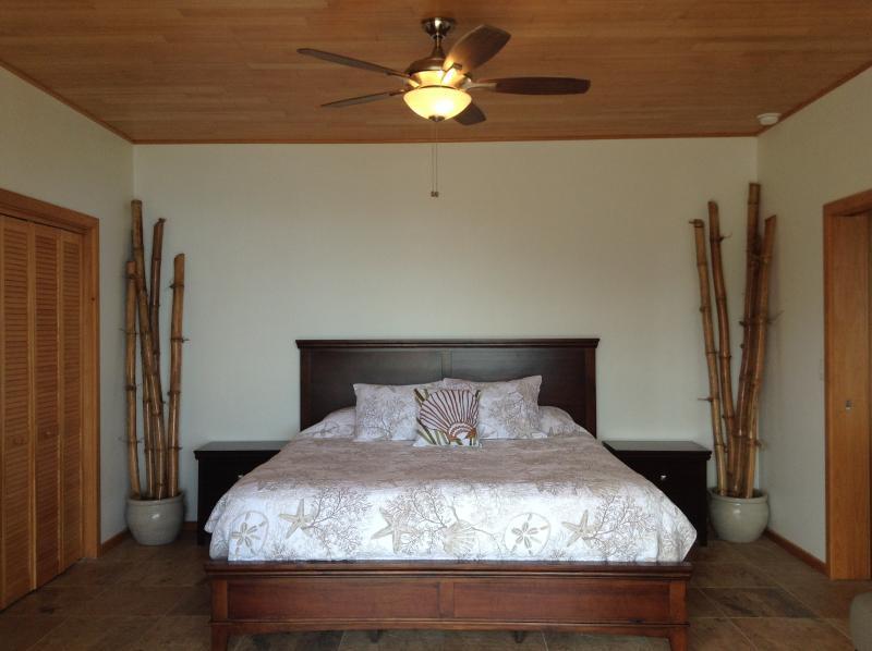 Master camera da letto ha il bagno aria condizionata e bagno privato, cabina armadio e cassaforte