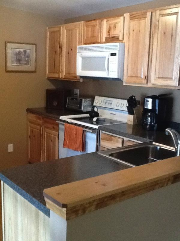 Fully equipped kitchen with dishwasher, microwave, ice maker, double sink, range, and refrig
