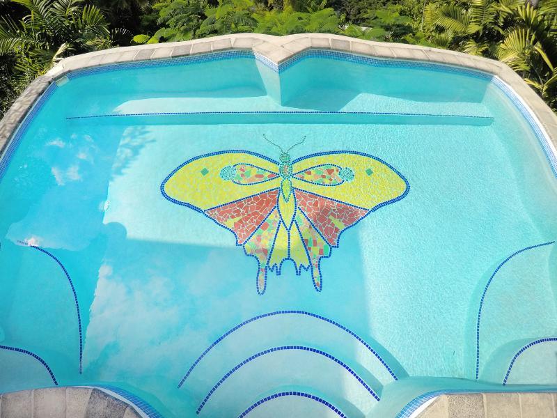 Con una hermosa mariposa de baldosa piscina...