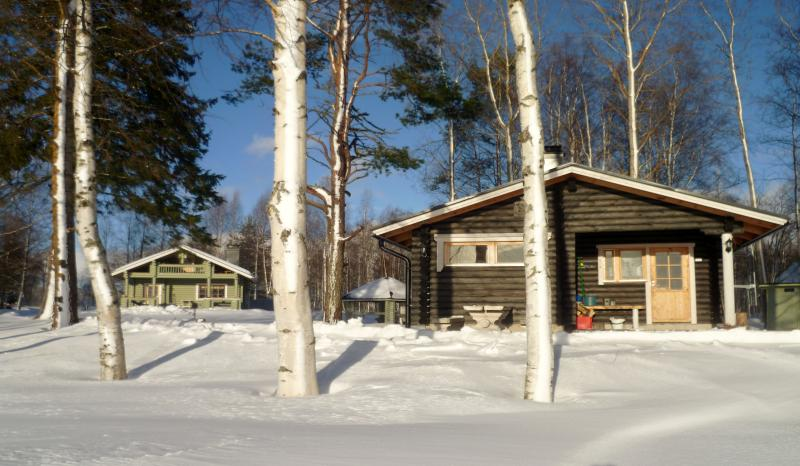 Winter view.  Shall we take the sunbathe  and after  it   we go  into the sauna bath.