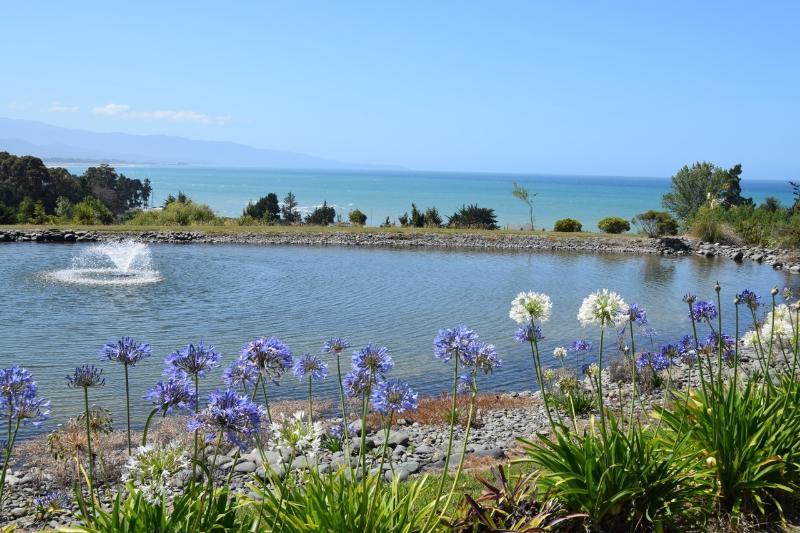 vista mare fronte stagno con splendidi fiori