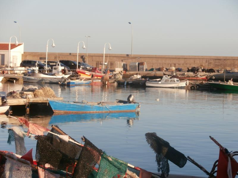 fishing boats in the port